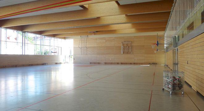 turnhalle erlweingymnasium dresden ibk ingenieure braun. Black Bedroom Furniture Sets. Home Design Ideas